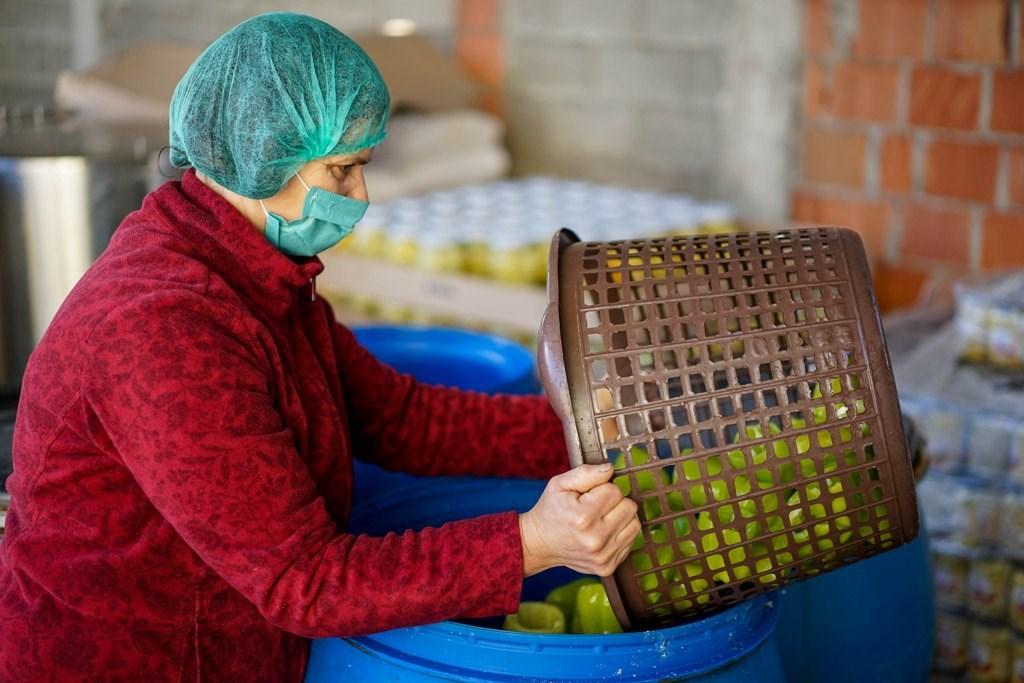 """Bujqësia nuk u kursye nga pandemia, por """"Krusha"""" shtoi punëtorët dhe rriti eksportet"""
